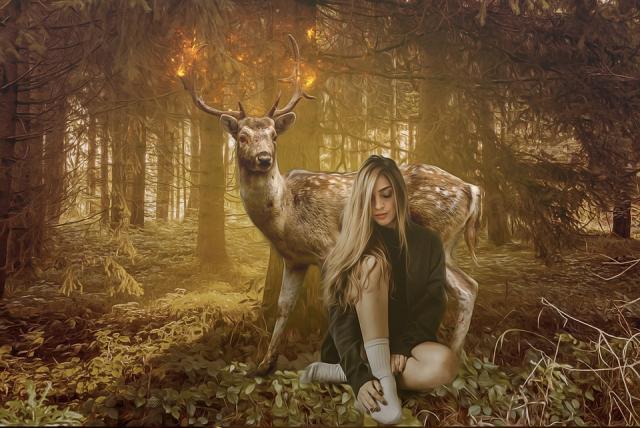 fantasy-4415623_960_720.jpg